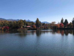蓼科湖の景色