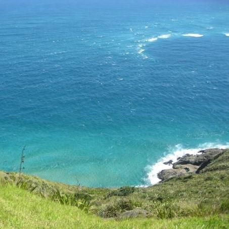 NZの北島へ
